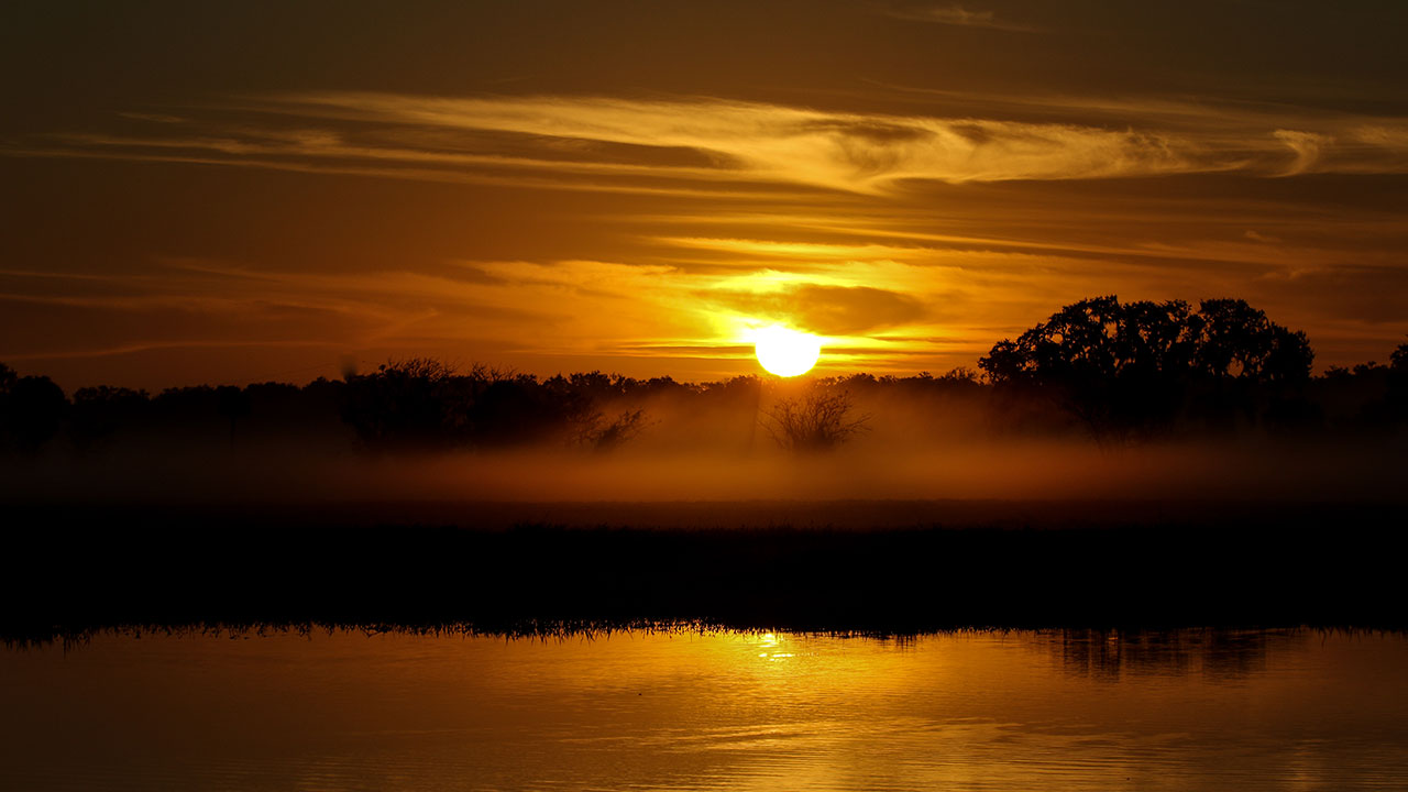 Eagle-Country-Sunrise-Fog