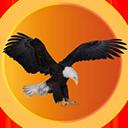 Eagle Country Web